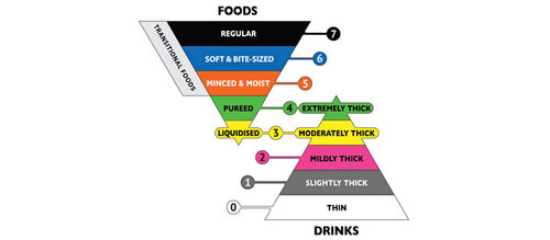 Developing An Iddsi Compliant Dysphagia Diet Is Your